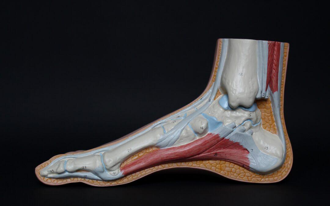Tendinopatia al tendine d'Achille: cause e cure
